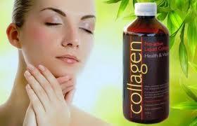 collagen.2